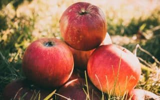 Food and Liquid Items for Kidney Cleansing - Apples